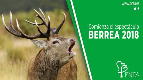 Vive la Berrea en plena naturaleza + ruta de senderismo